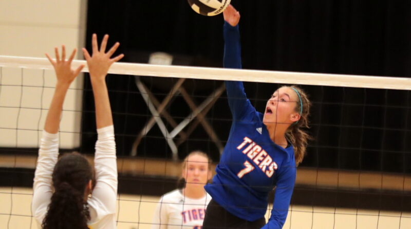 Saltillo volleyball takes split in weeks action